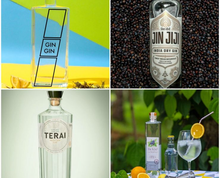 new exciting gins in india